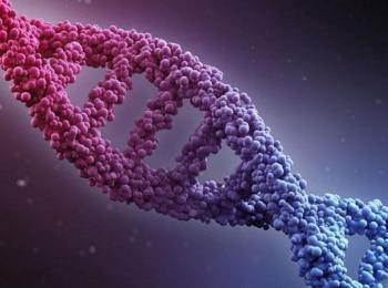 ДНК шоу 2 серия