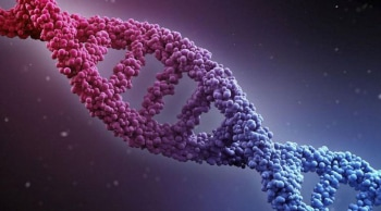 ДНК шоу Алексей Панин