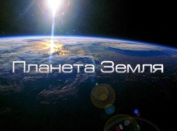Планета Земля Великие равнины