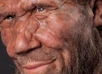 Почему исчезли неандертальцы?