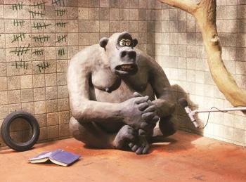 В мире животных Сезон 2-й 9 серия